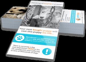 folletos y tarjetas para empresas